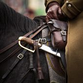 Close-up harness and saber at Polish cavalry. poster