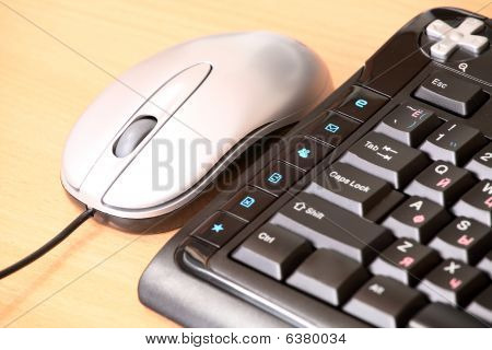 The computer mouse and the keyboard