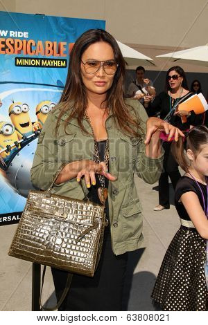 LOS ANGELES - APR 11:  Tia Carrere at the Despicable Me Minion Mayhem  and Super Silly Fun Land at Universal Studios Hollywood on April 11, 2014 in Universal City, CA