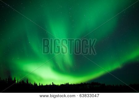 Boreal Forest Taiga Northern Lights Substorm Swirl