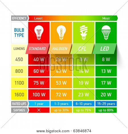 Light bulb comparison chart infographic. Vector.