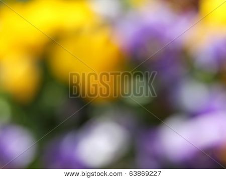 Background abstract floral blur