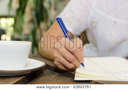 Close-up of a young woman writing into her diary, in the backyard garden. poster