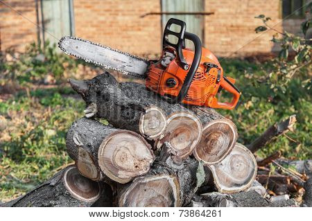 Orange Chainsaw