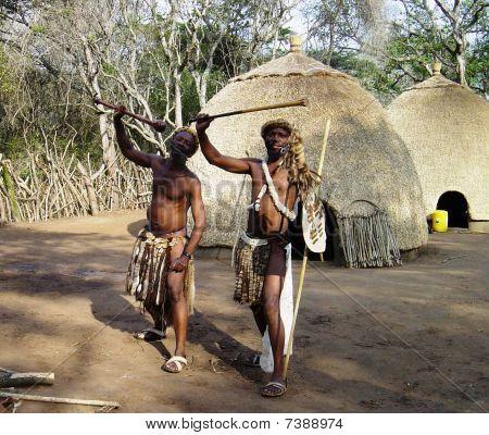Zulu warriors