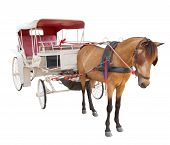 horse fairy tale carriage cabin isolated white background use for transport decoration object poster
