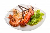 Giant Freshwater Prawn and king prawns isolated poster