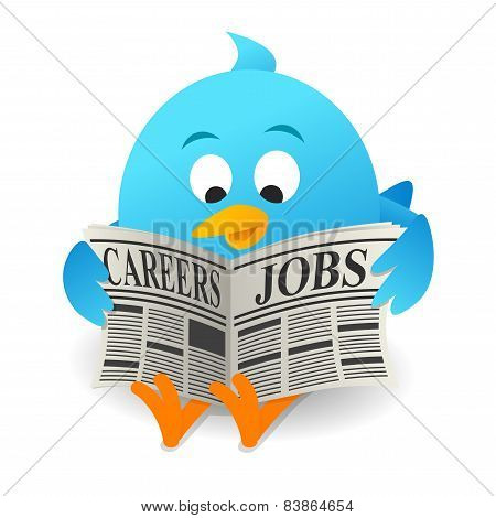Blue bird Search Jobs
