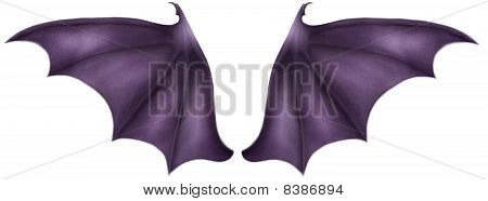 Purple Dragon Wings