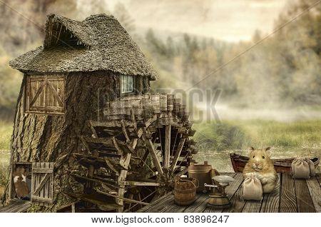 Fairy House (mill)