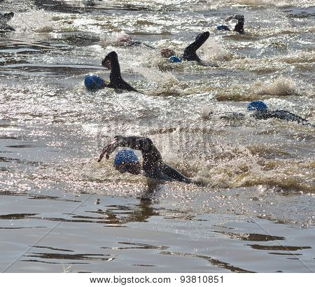 Triathlon swimmers in the river Ouse