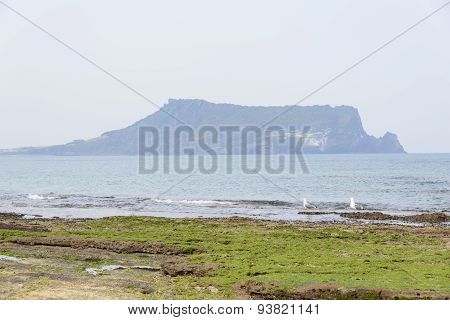 Landscape Of Gwangchigi Beach With Seongsan Ilchulbong.