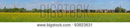 Hemmingford water meadow