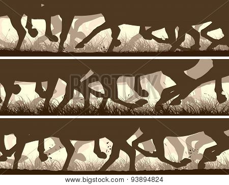 Horizontal Banners Of Silhouette Of Galloping Horses Legs.
