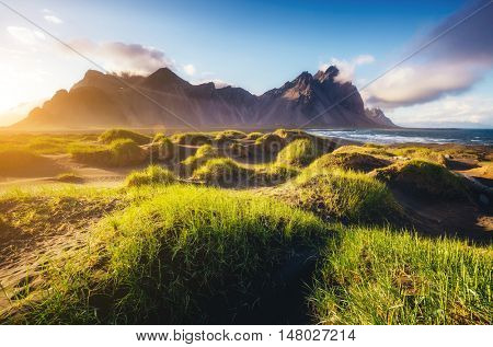 Beautiful view of the green hills glowing by sunlight. Dramatic and gorgeous scene. Location famous place Stokksnes cape, Vestrahorn (Batman Mountain), Iceland, Europe. Warm toning. Beauty world.