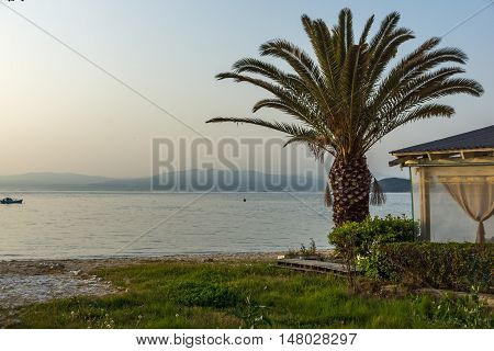 Sunset on embankment and palm tree in Thassos town, East Macedonia and Thrace, Greece