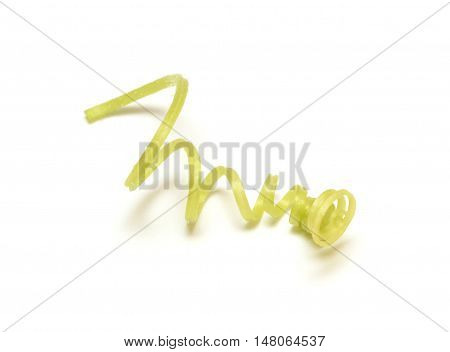Cucumber tendril isolated on the white background