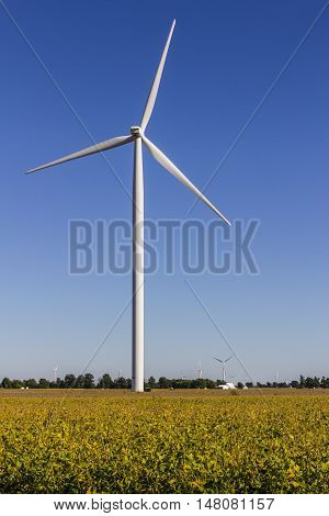 Wind Farm in Central Indiana. Wind and Solar Green Energy areas are becoming very popular in farming communities III