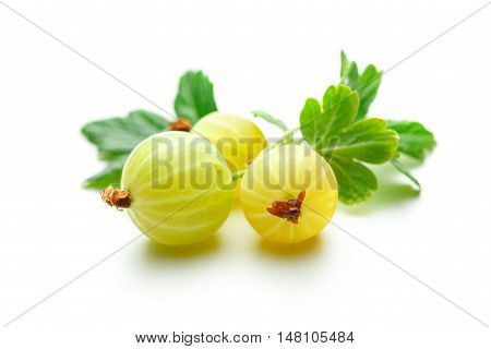 Fresh Gooseberry With Leaves