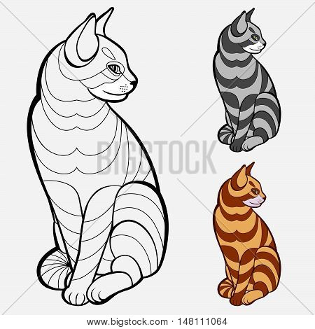 Coloring book pages for kids and adults.(striped cat)