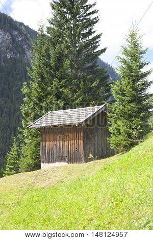 Wooden cabin with green mountain in Tirol Austria