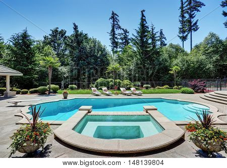 Large Swimming Pool Of American Suburban Luxury House