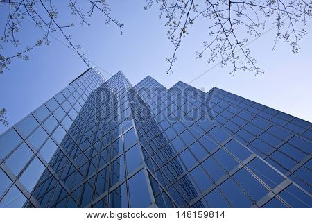 Vancouver, BC - April 20, 2015 - Looking up from the street is a shot of a glass and steel office building in downtown Vancouver with blue sky and blue reflected light leading up to the five pointed top of the structure and using a long, wide perspective,