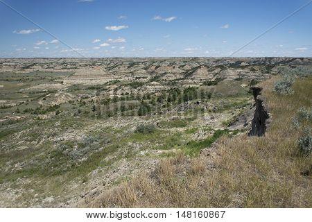 Landscape of Theodore Roosevelt National Park, North Dakota, USA.