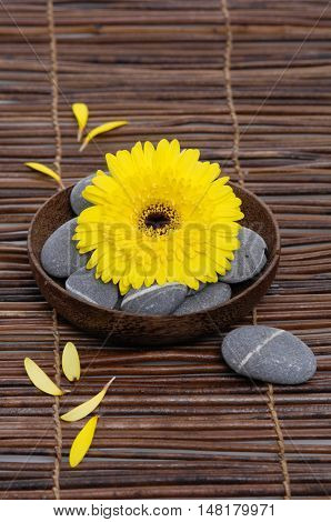 Yellow gerber with gray stones in bowl on mat, petals