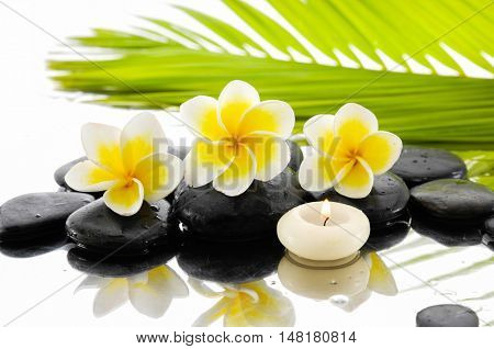 Spa still life with frangipani ,palm and black stone, candle
