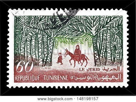 TUNISIA - CIRCA 1959 : Cancelled postage stamp printed by Tunisia, that shows The Jerid.