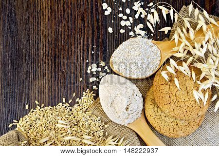 Flour and bran oaten in a spoons, stalks of oats, grits and biscuits on a background sacking on a wooden board