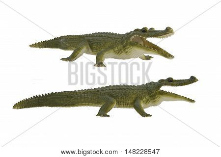 Crocodile toy photo. Isolated green crocodile profile and angle view toy photo.