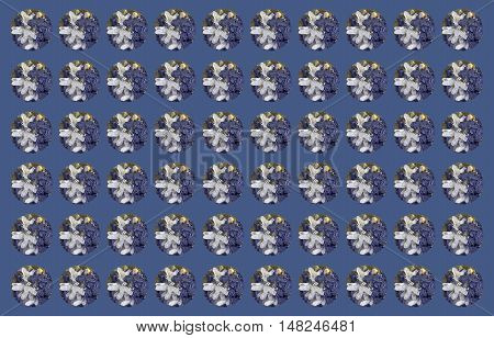 The circles pattern of blue galena and white quartz on blue background with discrete strips