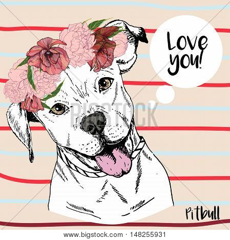 Vector close up portrait of pitbull girl wearing the flower wreath. Hand drawn domestic pet dog illustration. Isolated on neutral background with red and blue stripes.
