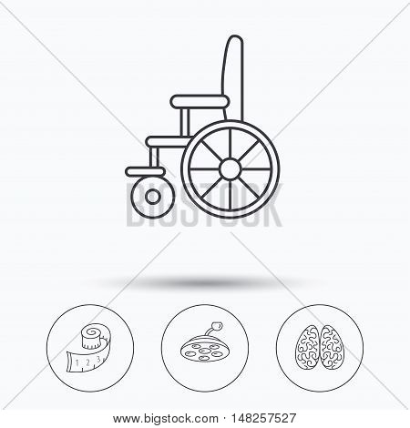 Wheelchair, neurology and weight loss icons. Surgical lamp linear sign. Linear icons in circle buttons. Flat web symbols. Vector