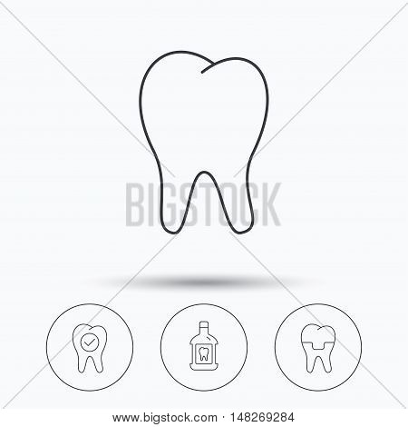 Tooth, dental crown and mouthwash icons. Check teeth linear sign. Linear icons in circle buttons. Flat web symbols. Vector