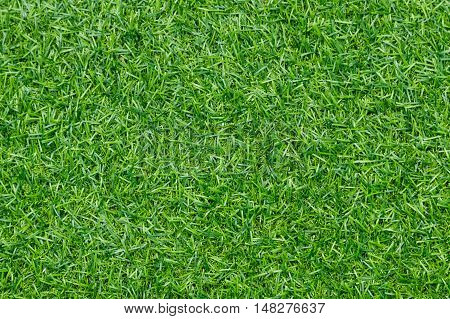 Artificial grass backgroundGreen grass soccer field background