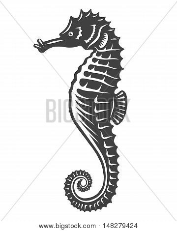 Monochrome sea horse icon isolated on white background