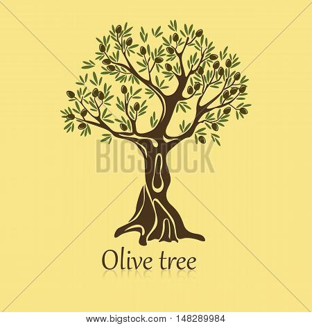 Logo of olive tree with berries on branches. Garden plant banner and bottle label or sticker, mediterranean and egypt, sicilian and rome cultivation, shop theme