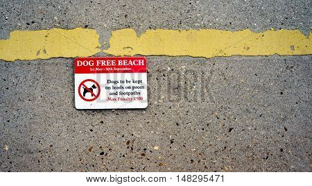 No Dogs on the beach sign showing a penalty for breaking the rules.