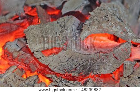 Texture fire embers with the gray ashes