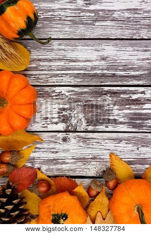Autumn Corner Border Of Pumpkins, Leaves And Gourds Against A Rustic Old White Wood Background