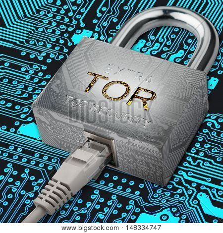 The concept of a secure network connection using TOR protocol
