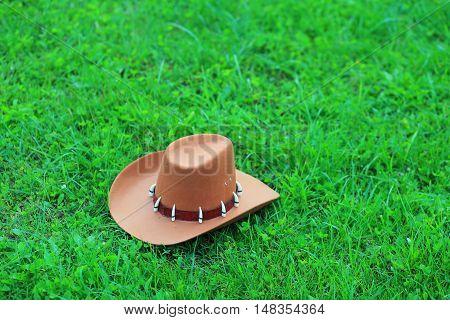Brown Cowboy Hat On Green Grass