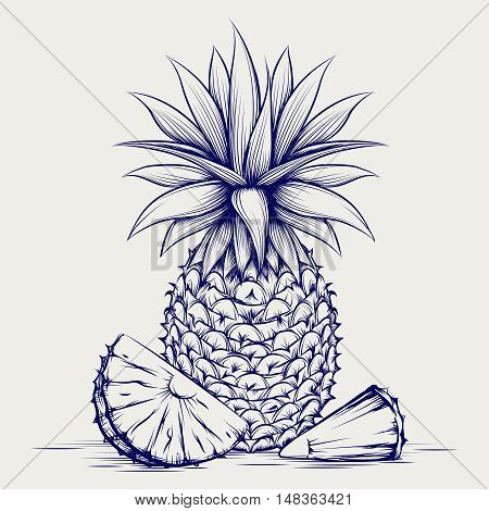 Ball pen pineapple isolated on grey background. Sketch pineapple vector illustration