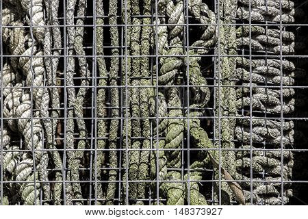 An abstract selection of caged rope patterns. This is actually a manmade home for insects otherwise known as an insect hotel.
