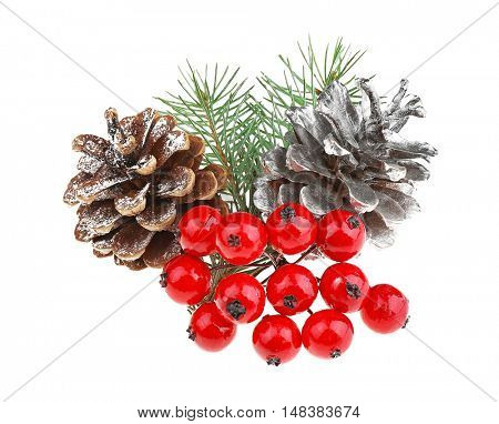 Mistletoe berries, strobiles and pine-tree branch isolated on white
