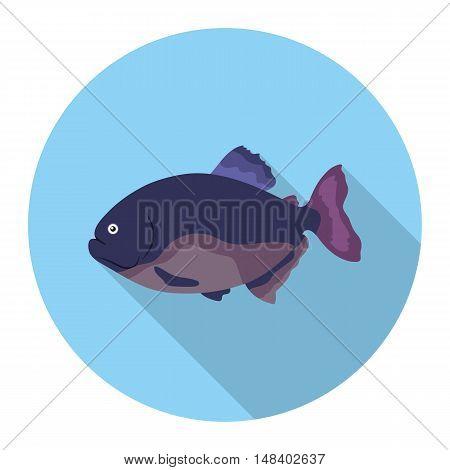 Piranha fish icon flat. Singe aquarium fish icon from the sea, ocean life flat.