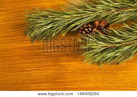 New Year 2017 composition with fir cones and fir tree branch on wooden background
